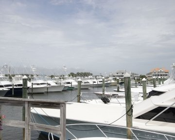 View of all boats docked on dock