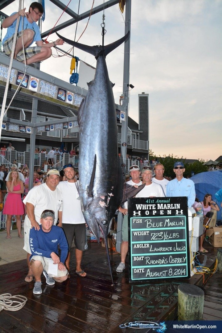Ocean City MD White Marlin Open Book an OffshoreDeep Sea Charter Boat